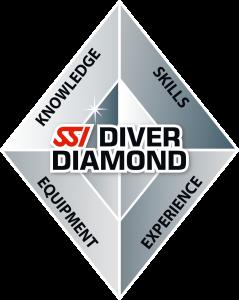 SSI_LOGO_Diamond_RGB_png
