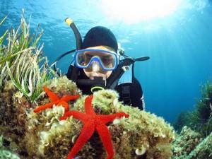 plongeur debutant