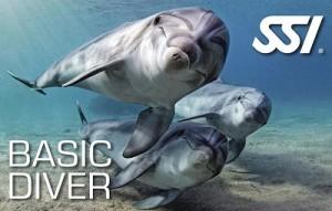 basic-diver-ssi
